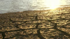 Sparkling Sun Cracked Mud Landscape Stock Footage