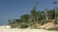 Wild Beautiful Beach on Darss Peninsula - Baltic Sea, Germany Stock Footage