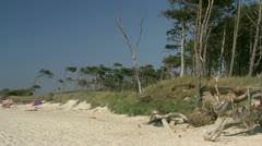 Beautiful Wild Beach on Darss Peninsula - Baltic Sea, Northern Germany Stock Footage