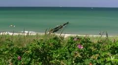 Beautiful Beach in Ahrenshoop on Darss Peninsula - Baltic Sea, Germany Stock Footage