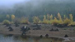 Timelapse Fog 01 Stock Footage