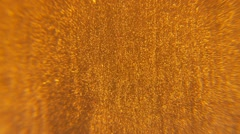 Electronic Floating Particles - Gold Background Stock Footage