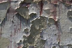 old wall detail - stock photo