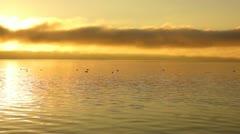 Sunrise on lake Stock Footage