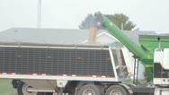 Filling Grain Truck Stock Footage