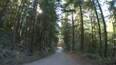 P02301 Driving on Dirt Road Through Forest with Fisheye Lens - stock footage