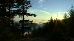 P02313 Sunrise Over Costal Fog and Forest at Olympic National Park Stock Footage