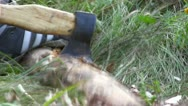 Cutting log of wood Stock Footage
