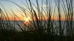 Beach Grass in front of a Beautiful Sunset - Baltic Sea, Northern Germany Stock Footage