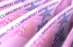 turkish lira close-up - stock photo