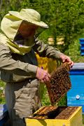 beekeeper and honeycomb with bees and honey - stock photo