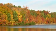 Stock Video Footage of autumn lake tilt