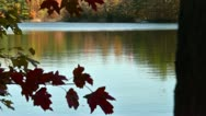 Stock Video Footage of autumn lake water
