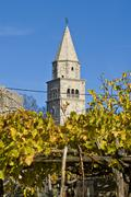 Church tower and the grapevine in Gracisce - stock photo