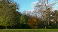 Colorful Park in Autumn Stock Footage