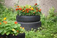 Floral flowerbed Stock Photos