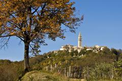 Autumn tree and stony Pican - stock photo