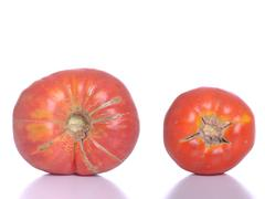 biological tomatoes - stock photo