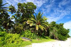 havelock island blue sky with white clouds, andaman islands, india - stock photo