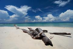 Havelock island blue sky with white clouds, andaman islands, india Stock Photos