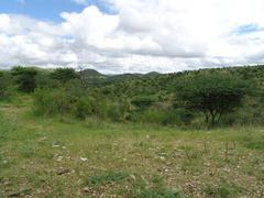 landscape of daan viljoen park - stock photo