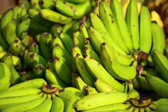 tropical bananas in local bazaar in india. - stock photo