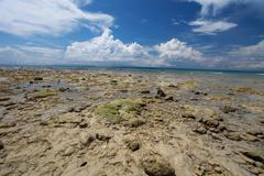 Low tide and blue sky and white clouds on the coral beach. andaman islands. Stock Photos