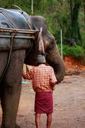 Man and his elephant. Stock Photos