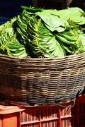 Stock Photo of green leaves in local market in india.