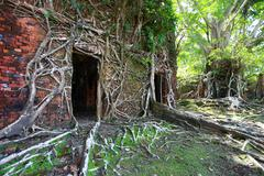 Ruin of abandoned building covered with roots on ross island. andaman islands Stock Photos