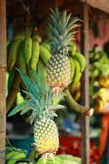 Fresh pineapples seen on a weekly fruit market Stock Photos