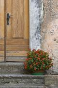 Stony house, doors and a flower pot - stock photo