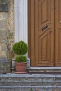 Wooden door and the greenery Stock Photos