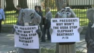 Protest against animal abuse Stock Footage