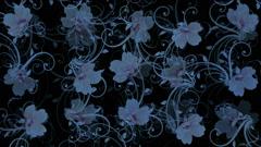 Flower petals pattern background. Stock Footage