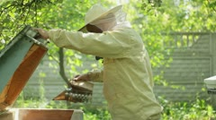 Beekeeper at work with fumigation apparatus HD Stock Footage