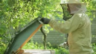 Stock Video Footage of Beekeeper at work with fumigation apparatus  HD