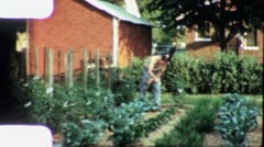 Boy Sprays Bug Spray Insecticide Garden Organic 60s Vintage Film Home Movie 5673 Stock Footage