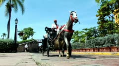 Horse Drawn Carriages in Cartagena, Colombia Stock Footage