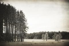 vintage lake - stock photo