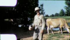 DIARY FARMER Portrait Herd Milk Cows 1970 (Vintage Film Home Movie Amateur) 5712 Stock Footage