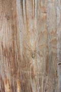 old wood plank board background - stock photo