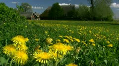 Beautiful Old Thatched-Roof House with Summer Flowers - Baltic Sea, Germany Stock Footage