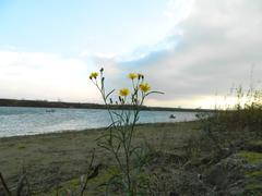 autumn landscape on the river - stock photo