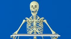 animated skeleton for your message - stock footage