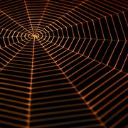 painted spiderweb - stock photo