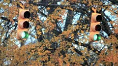 Traffic Lights 29.97 1080 - stock footage