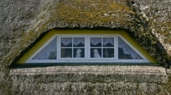 Thatched Roof on Darss Peninsula - Baltic Sea, Northern Germany Stock Footage