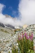 monviso path - stock photo