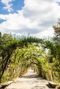 boboli gardens - stock photo